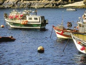 Semaine de pêche